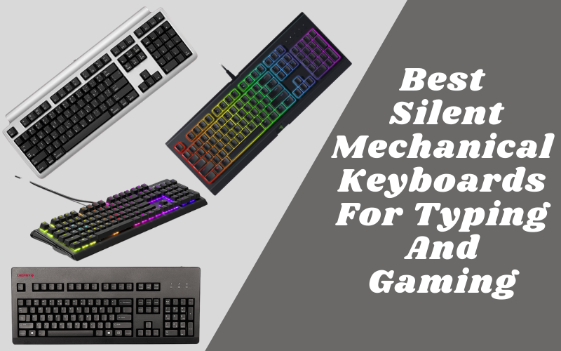 Best Silent Mechanical Keyboards For Typing And Gaming