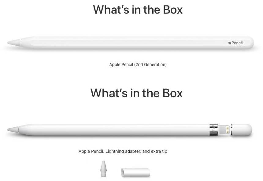Apple Pen Vs Apple Pencil